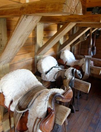 Saddles @ Estancia Cristina