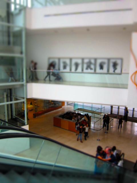 Museo de Arte Latinoamericano de Buenos Aires - 2014