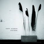 PoppyAckroyd_Feathers