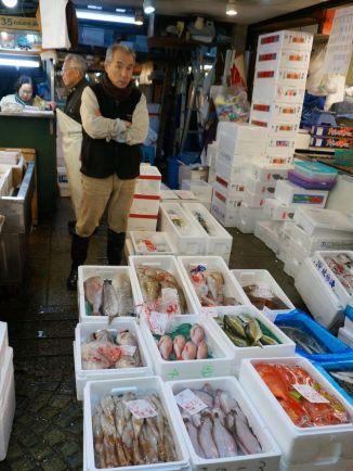Tsukiji Fish Market - 4