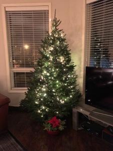 Hoboken Xmas tree | Partially dressed/undressed