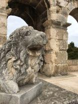 Lion @Pula amphitheater