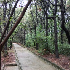Komrcar Park