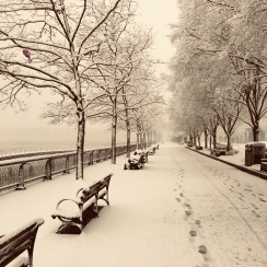 Hudson river walk