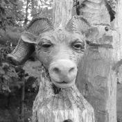 @Shelburne Farm VT