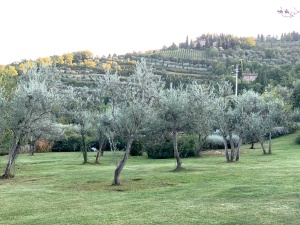 P.M. @ Villa Bordoni