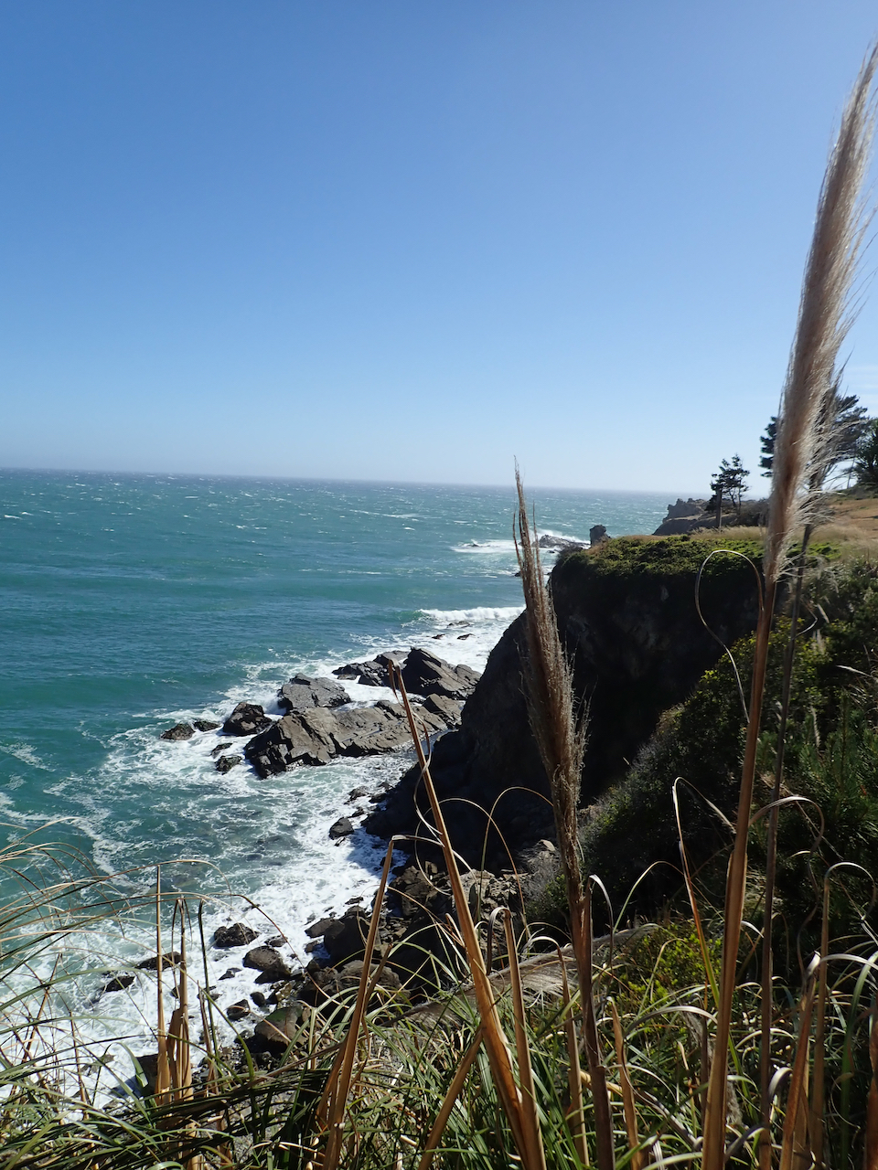 @Sonoma Coast