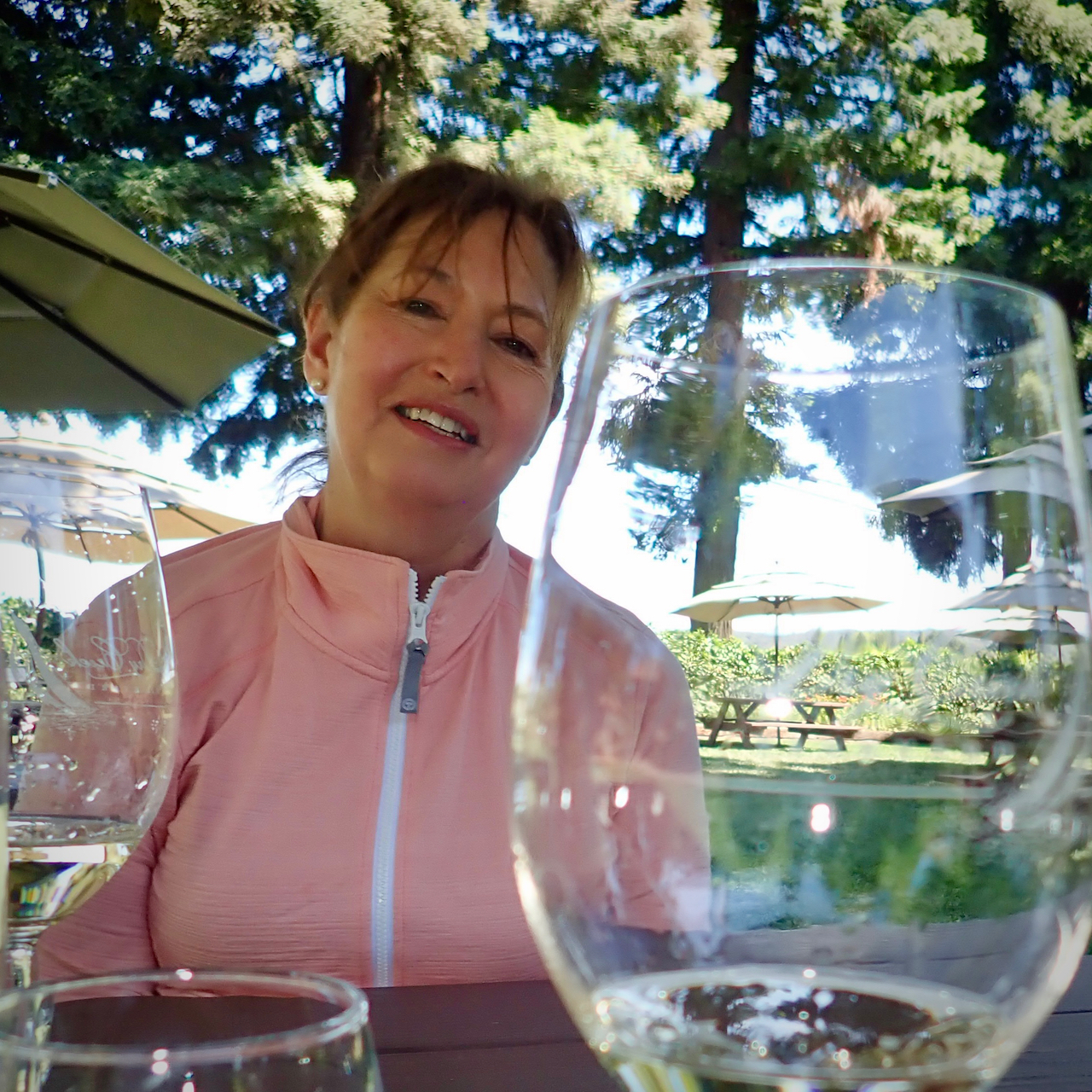 HVW @Dry Creek Vineyards